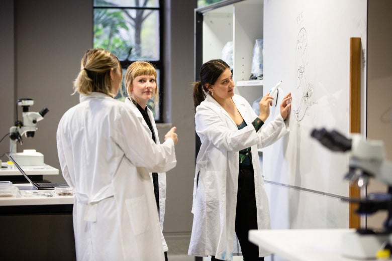 Three women in white lab coats work in front of a whiteboard in a lab.