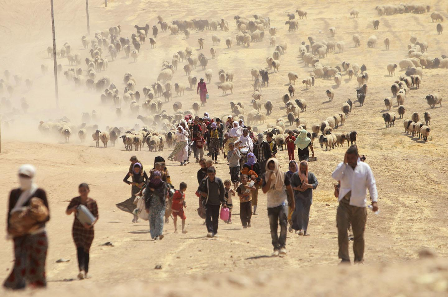 Displaced Yazidi people walk towards the Syrian border, on the outskirts of Sinjar mountain, near the Syrian border town of Elierbeh of Al-Hasakah Governorate August 10, 2014.