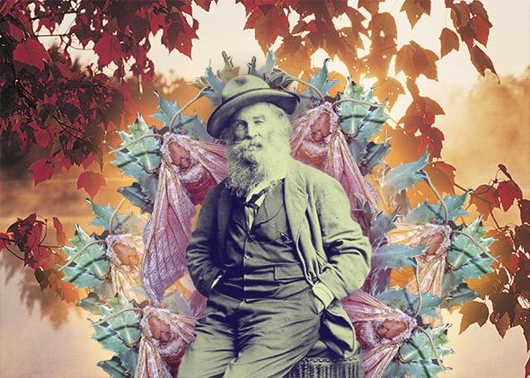 Walt Whitman's delight at trees and moths and glowworms