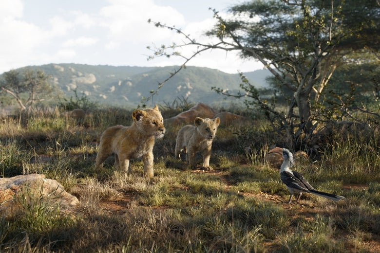 Two lion cubs stand facing a red-billed hornbill on a savannah.
