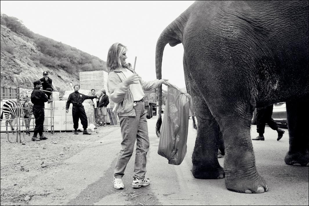 Deep Impact elephant wrangler, 1998.