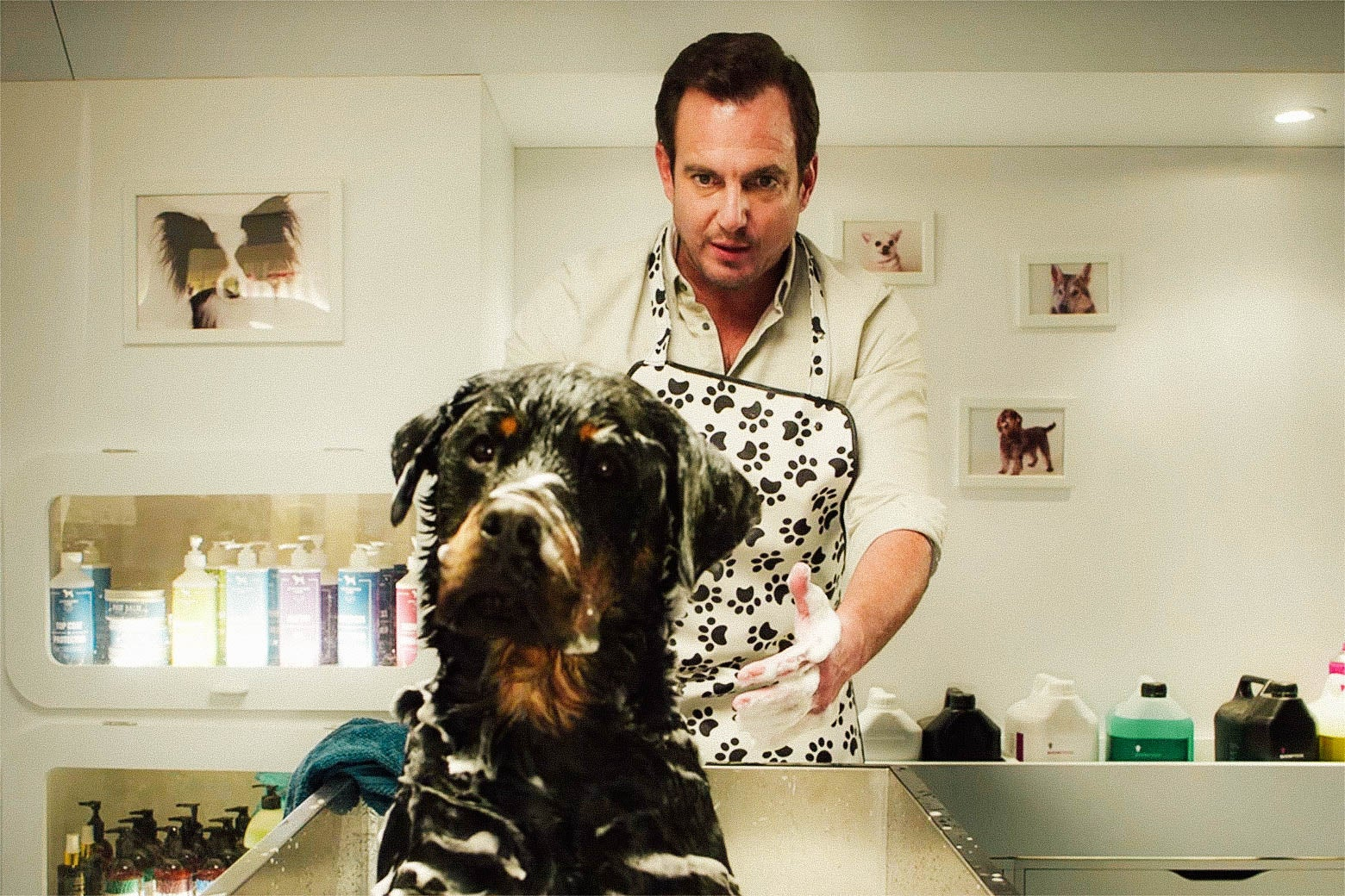 Will Arnett's character in Show Dogs gives a dog a bath.