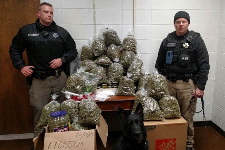 York County Sheriff's officers with 60 pounds of marijuana.