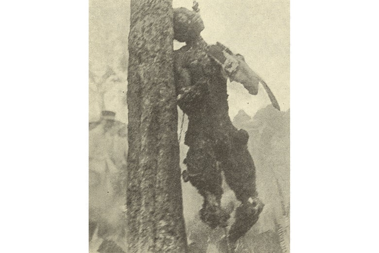 The almost unrecognizable body of Jesse Washington, hanging from a tree.