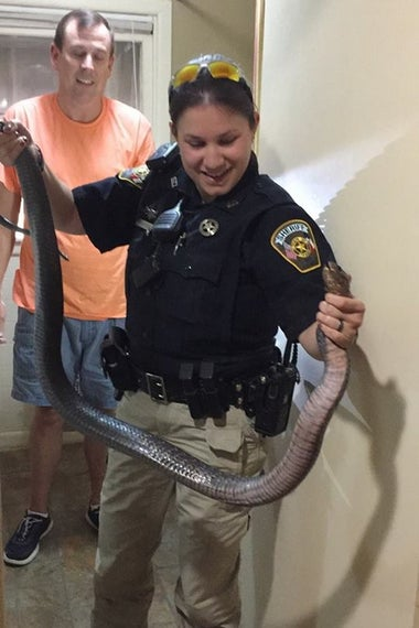 Deputy Lindsay Scotten holding the snake.