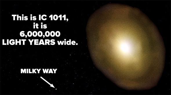 IC 1101