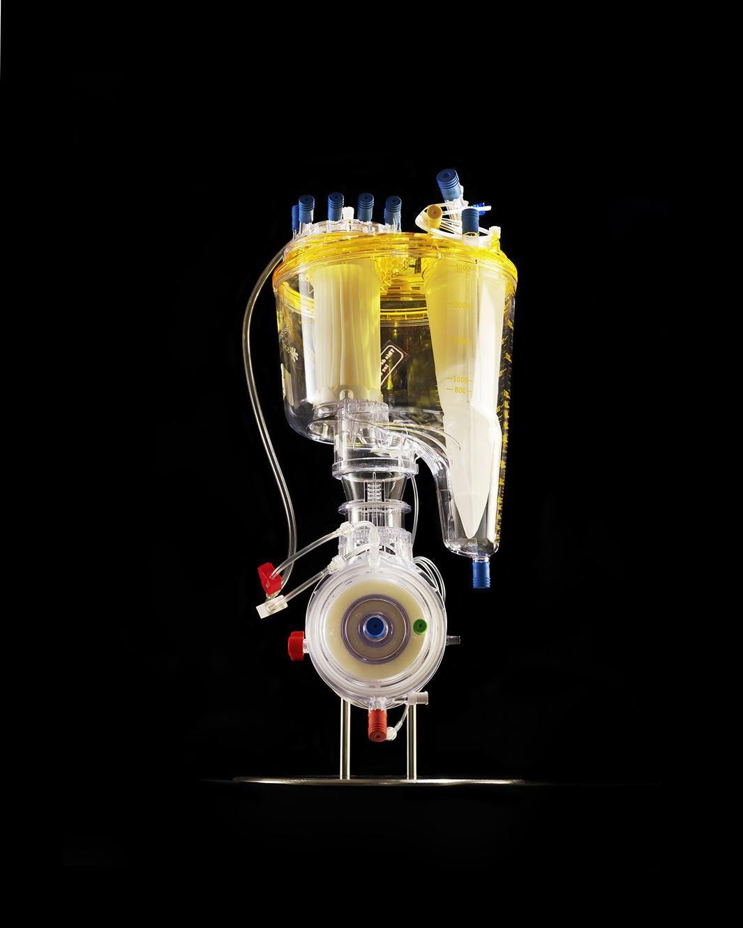 Oxygenator, 2013.