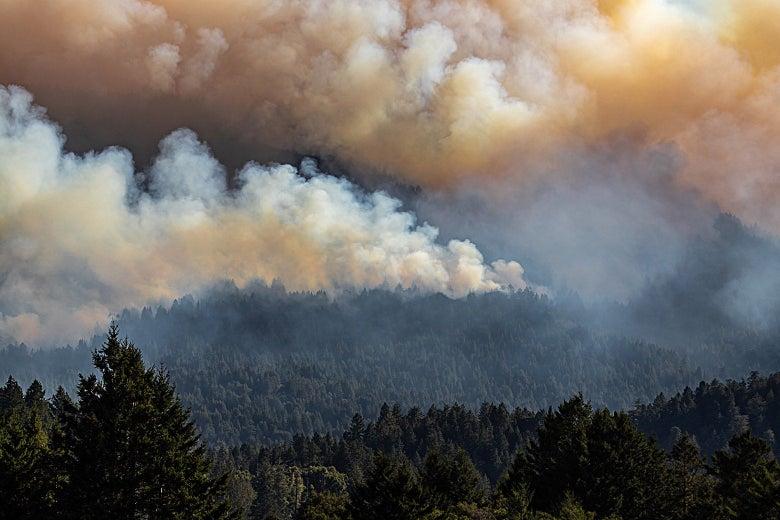 Huge cloud of smoke above trees