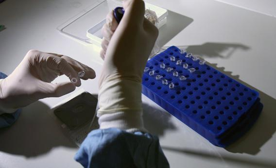 Scientists work in a lab at Vitrology Biotech Company in Clydebank, Scotland.