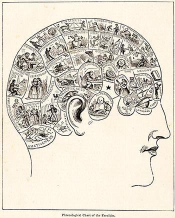 "19th Century Phrenological diagram cropped to show ""organs"" at top and front of head, 1883."