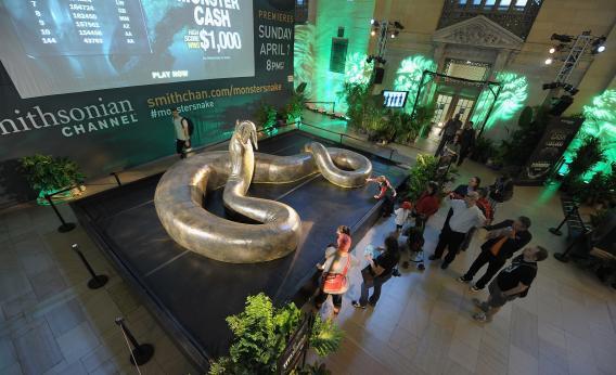 Coal mine fossils: Paleontology shows us past climate change