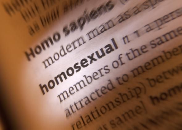 Another word for gay homosectual