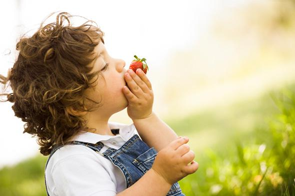 Boy eating a Strawberry