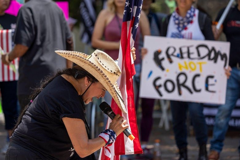 """A woman in a cowboy hat and leans forward toward a microphone she's holding. With the other hand, she holds an American flag. In the background, a person holds a sign saying """"Freedom not Force."""""""