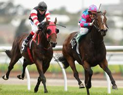 Jockeys. Click image to expand.