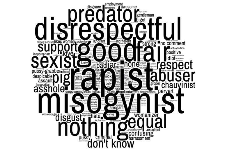 The word cloud with prominent words like rapist, predator, disrespectful, etc.