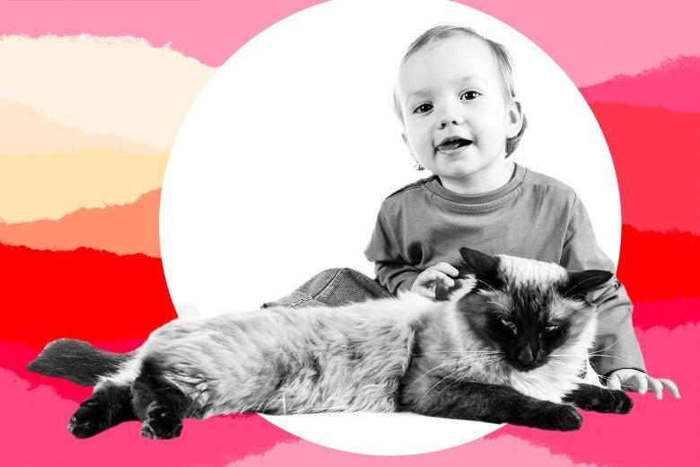"A toddler ""petting"" a cat."