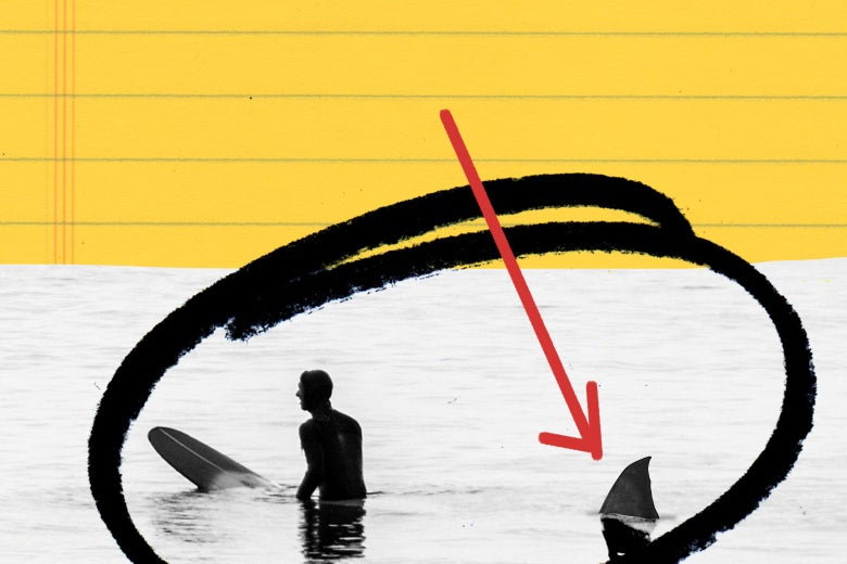 A surfer trailed by a shark fin.
