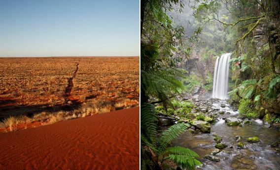 Australian desert and forest.