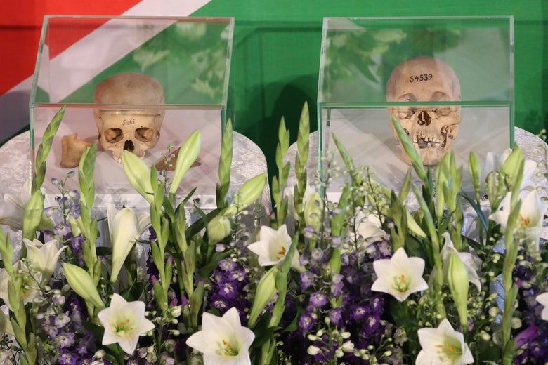 Two skulls in glass cases sit in front of a Namibian flag surrounded by flowers.