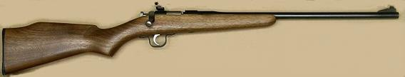 A .22 caliber rifle