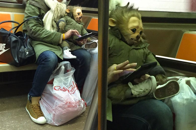 The WerePup on the subway.