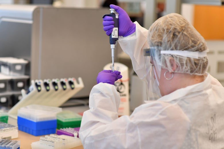 A lab worker transfers DNA solutions from one tube to another.