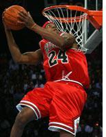 Bulls. Click image to expand.