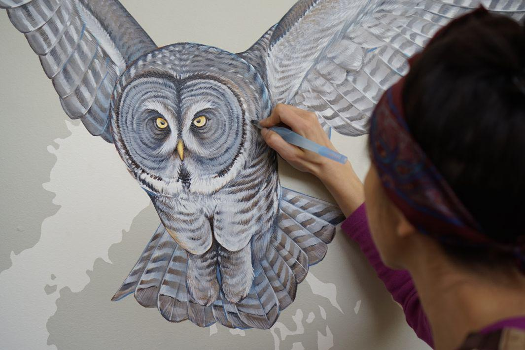 06_Great Grey Owl Progress