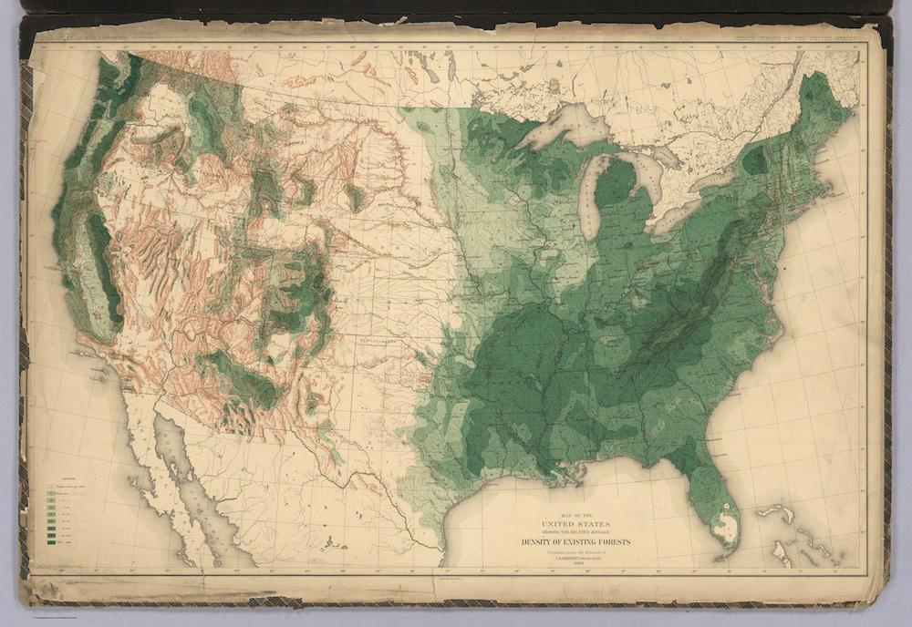 Pretty Tree Maps Showing the State of American Forests in 1884