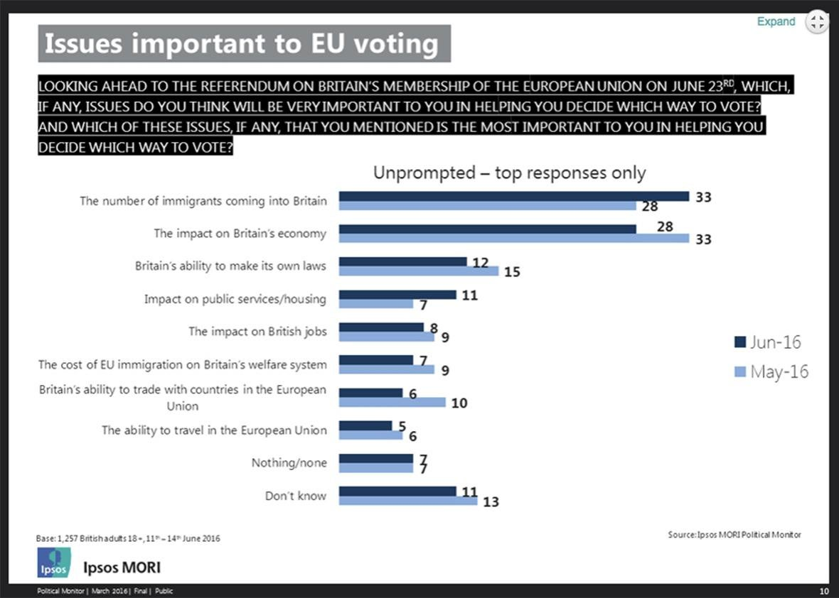 issues important to eu voting.
