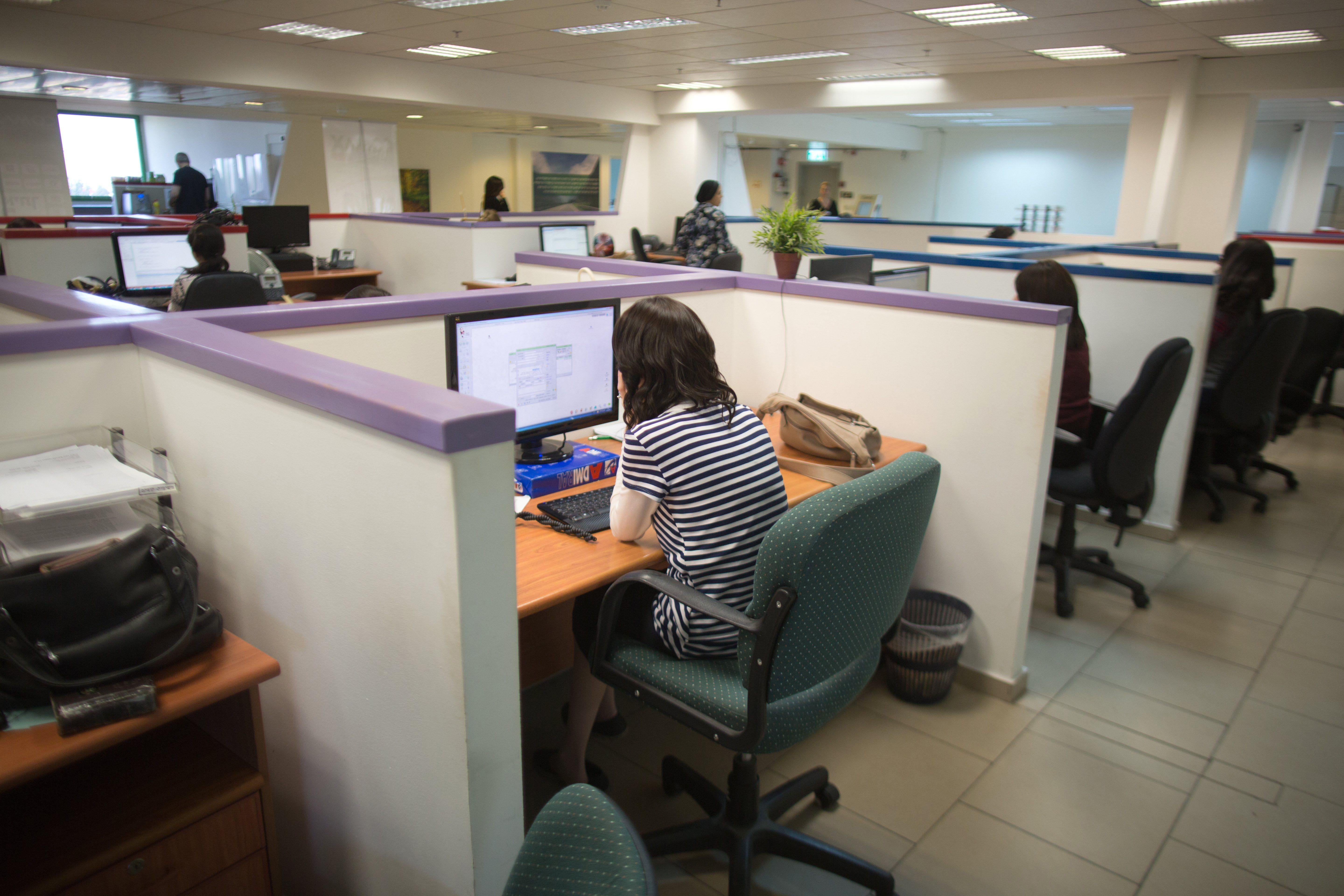 People sitting at computers in cubicles inside an office.