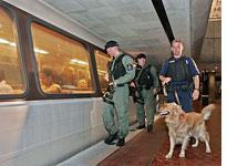 Police officers and a bomb-sniffing dog patrol a Washington, D.C., subway platform. Click image to expand.