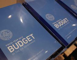 The Obama budget. Click image to expand.