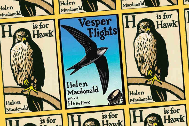 The cover of Vesper Flights, surrounded by multiple images of the cover of H Is for Hawk