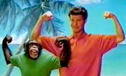 Travis the Chimp in an Old Navy commercial. Click image to expand.